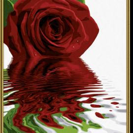 Červená ruža (40×50)