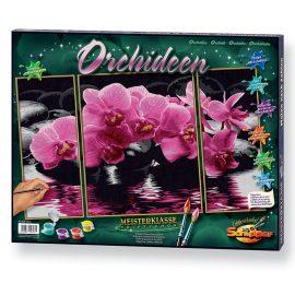 Orchidey (80 x 50 cm)