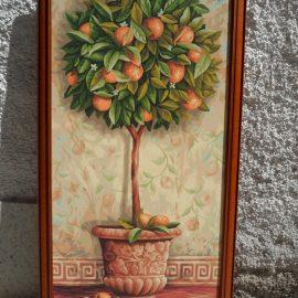Pomarančovník (40 x 80cm)