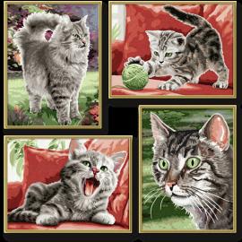 Zamatové paprčky (4 obrazy v balení 18 x 24 cm)