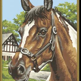 Portrét koňa (24 x 30 cm)