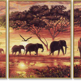Slonia karavána (80 x 50 cm)