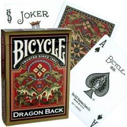 Bicycle Dragon Back