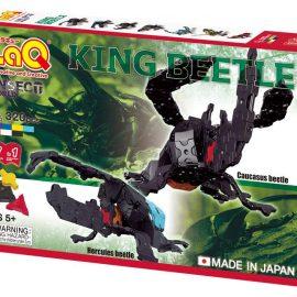 King Beetle