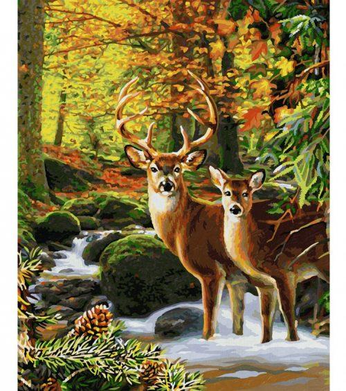 Jelene v lese maľovanie podľa čísel Schipper